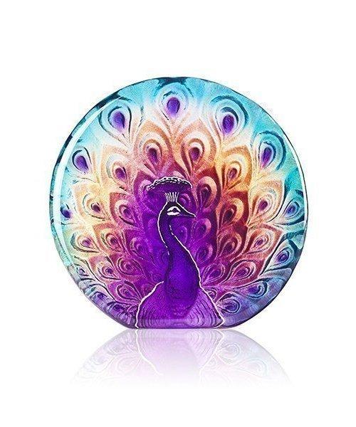 Fine and Elegant Peacock