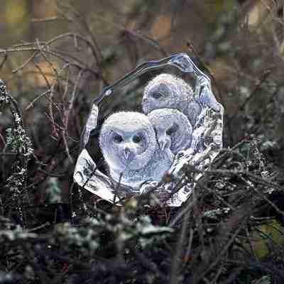 Original Wildlife Clear Sculpture