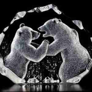 Two Bears fighting Wildlife clear