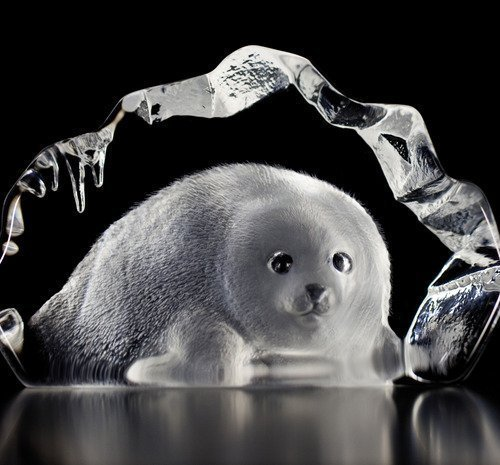 Baby Seal clear crystal