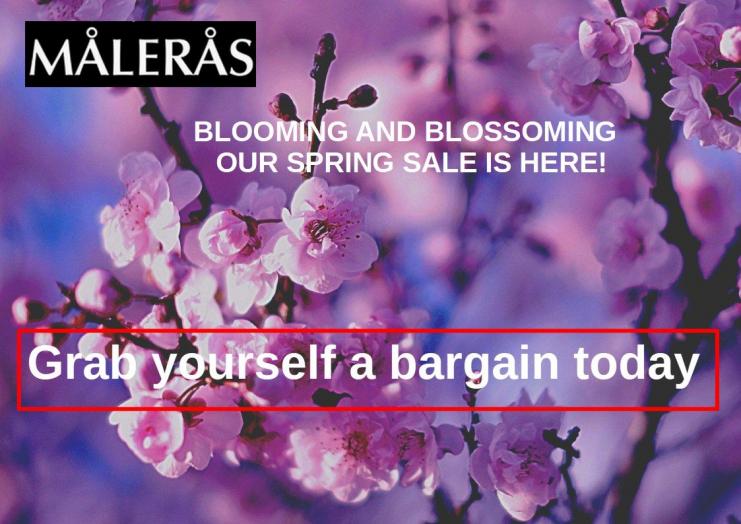 Cherry Blossom Sale Maleras Gibraltar