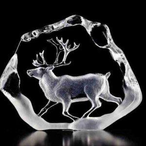 33399 Male Reindeer Trotting Wildlife Clear