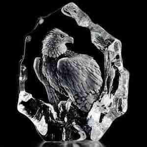 Bald Eagle Watching Original