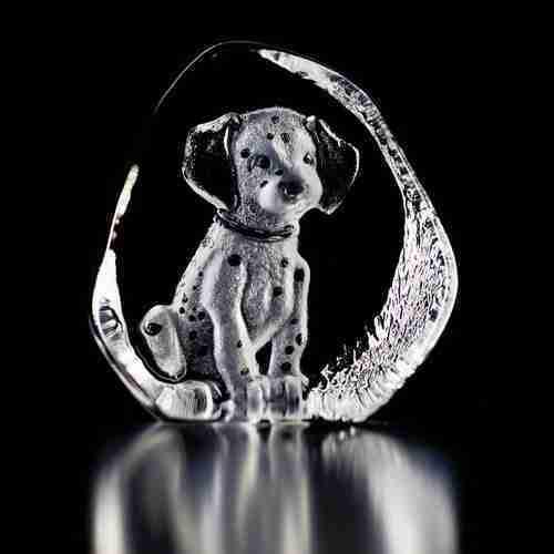 Dalmatian Puppy Original Small