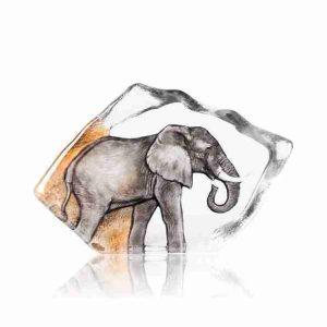 Elephant big five serie