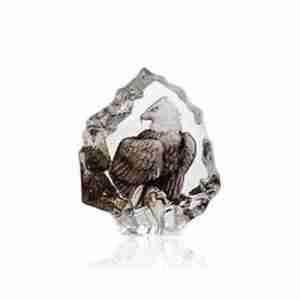 Beautiful bald eagle miniature